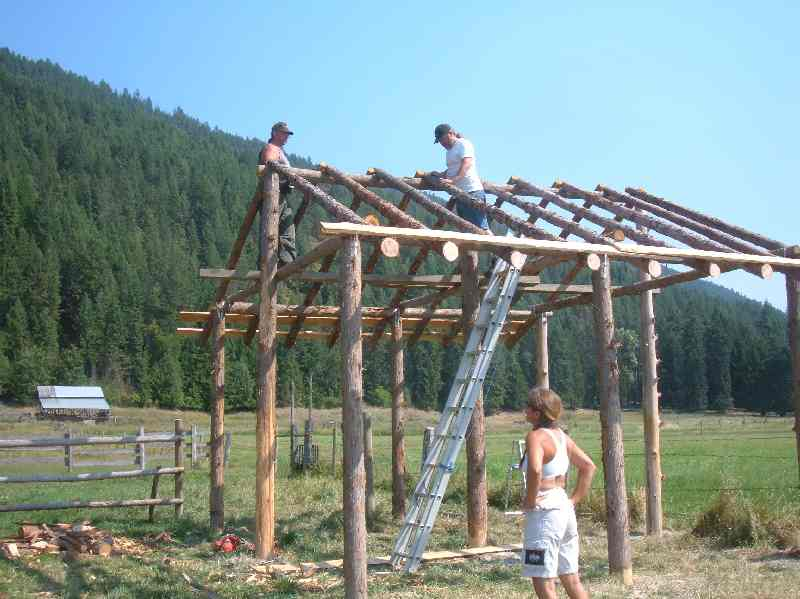 Our First Outbuilding A Traditional Pole Shed